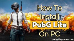 How To Download And Play PUBG Lite On Windows PC