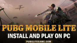 PUBG Mobile Lite Guide: Steps To Install And Play PUBG Mobile Lite On PC