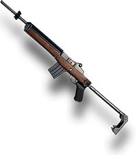Mini 14 Weapon