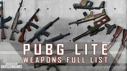 PUBG Lite Weapons Full List